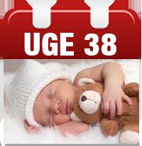 gravid uge 38 tegn på fødsel
