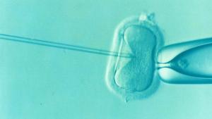 In vitro behandling