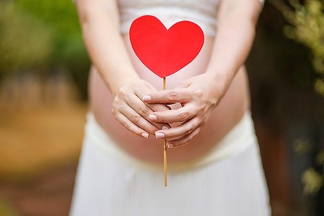 hvornår kan man tjekke om man er gravid